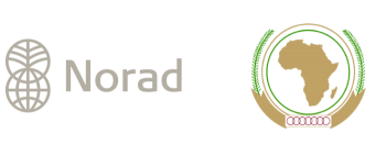 Norad and African Union Symbols