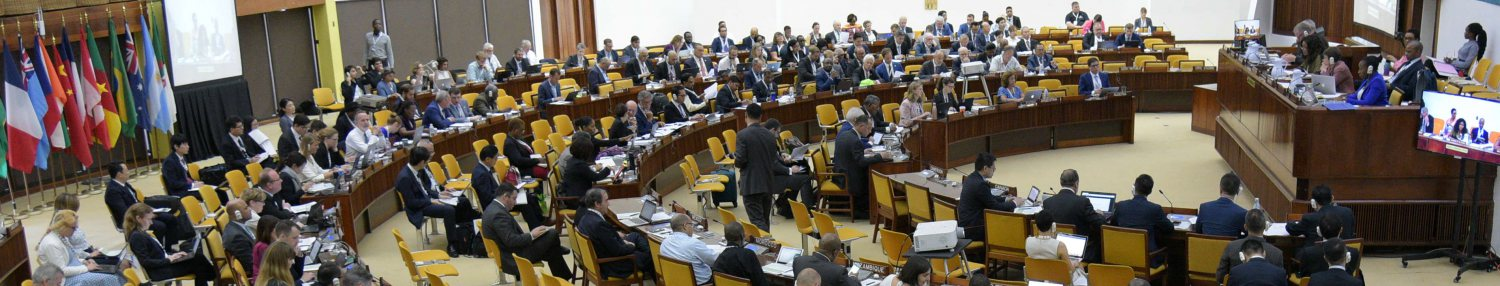 Meeting of the Assembly