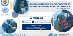 women in MSR webinar